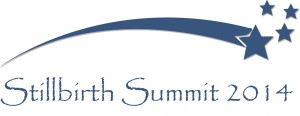 2014 Stillbirth_Summit logo